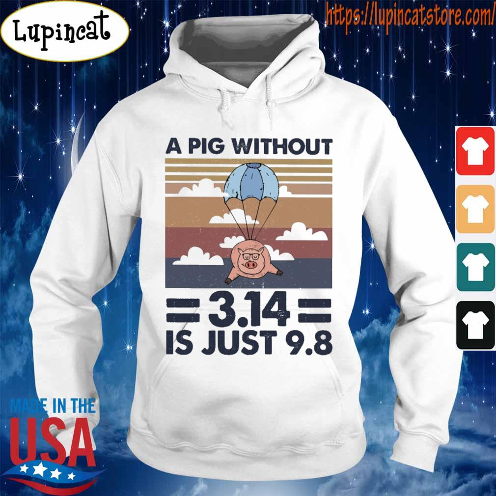 A pig without 3.14 is just 9.8 vintage s Hoodie