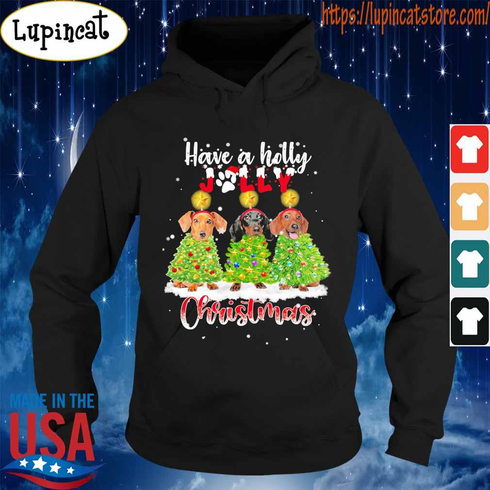 Dachshunds have a holly Jolly Christmas s Hoodie